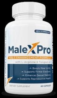 Male X Pro 1